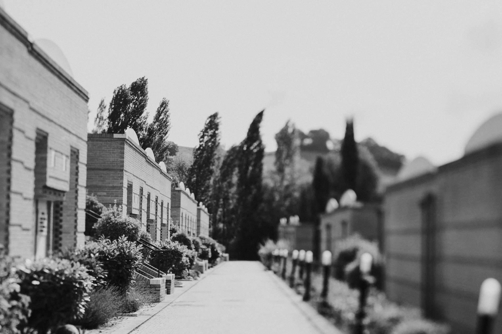 Cimitero Tolentino_8401